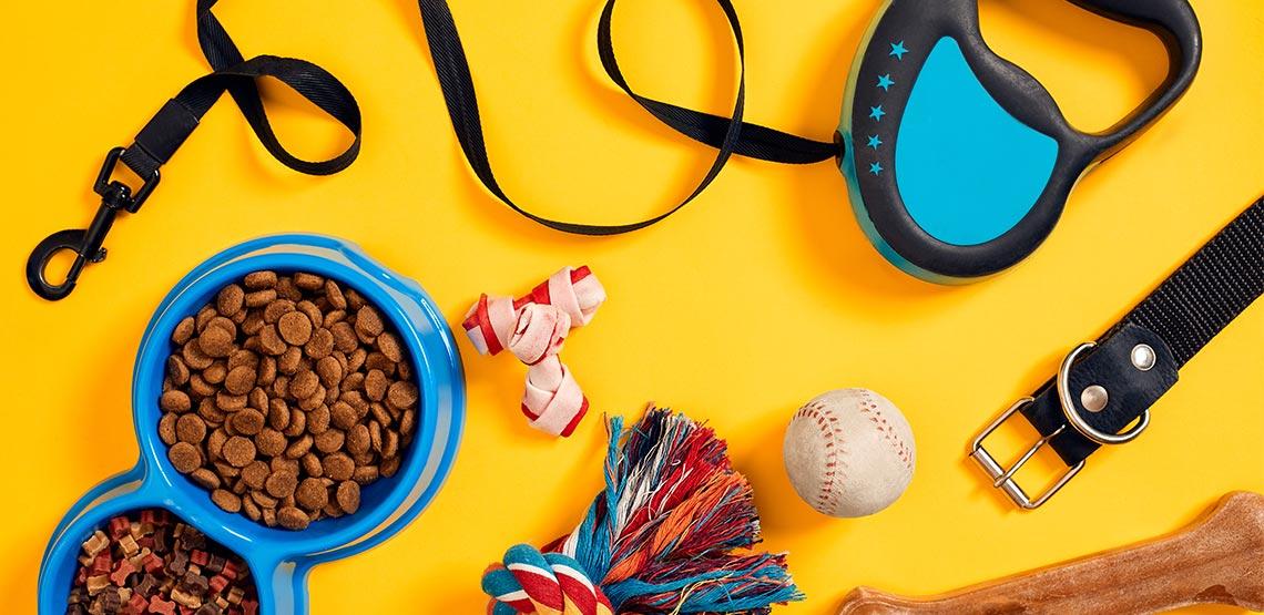 Leash, bowl, chew toy, baseball