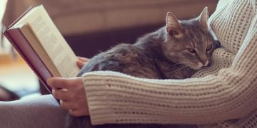 Cat sitting on lap of human who is reading a book