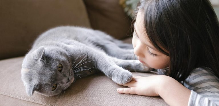 Little girl leans head on couch beside cat.
