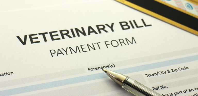 Payment form for vet