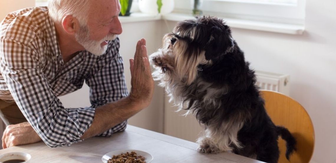 A man gives his dog a high five for proper eating