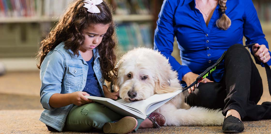 A girl sitting on the floor of a classroom holding a book sitting next to a therapy dog.